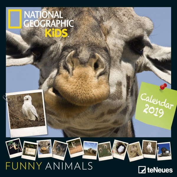 Funny Animals National Geographic 2019