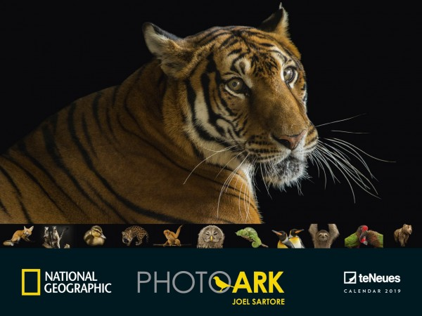 Photo Ark National Geographic 2019