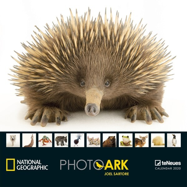 National Geographic Photo Ark 2020